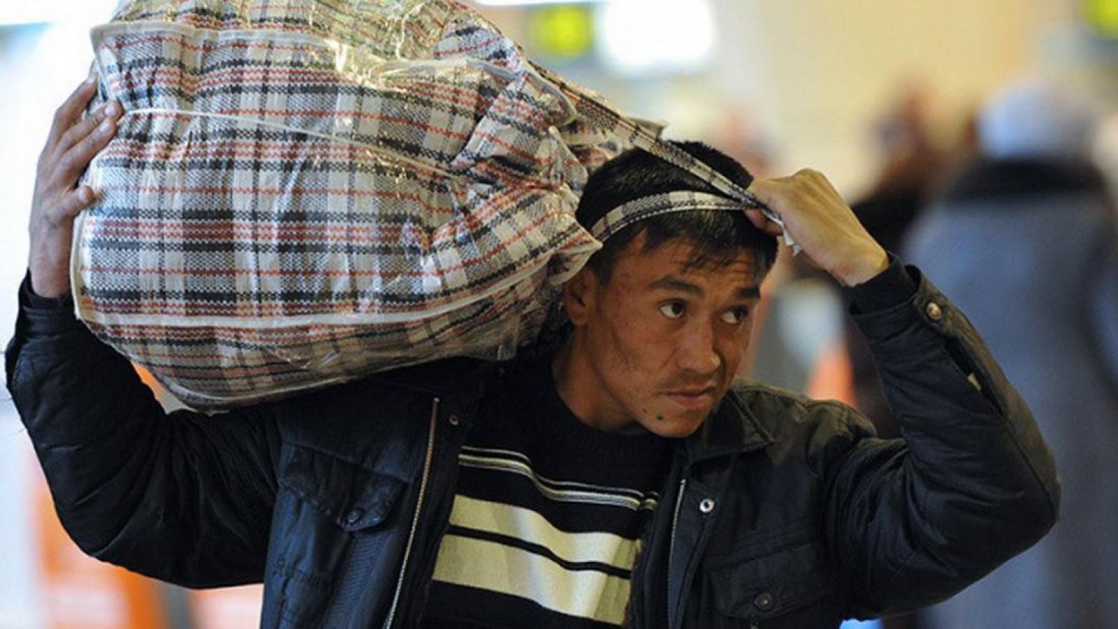 Около 400 нелегалов депортировали из Вологодской области