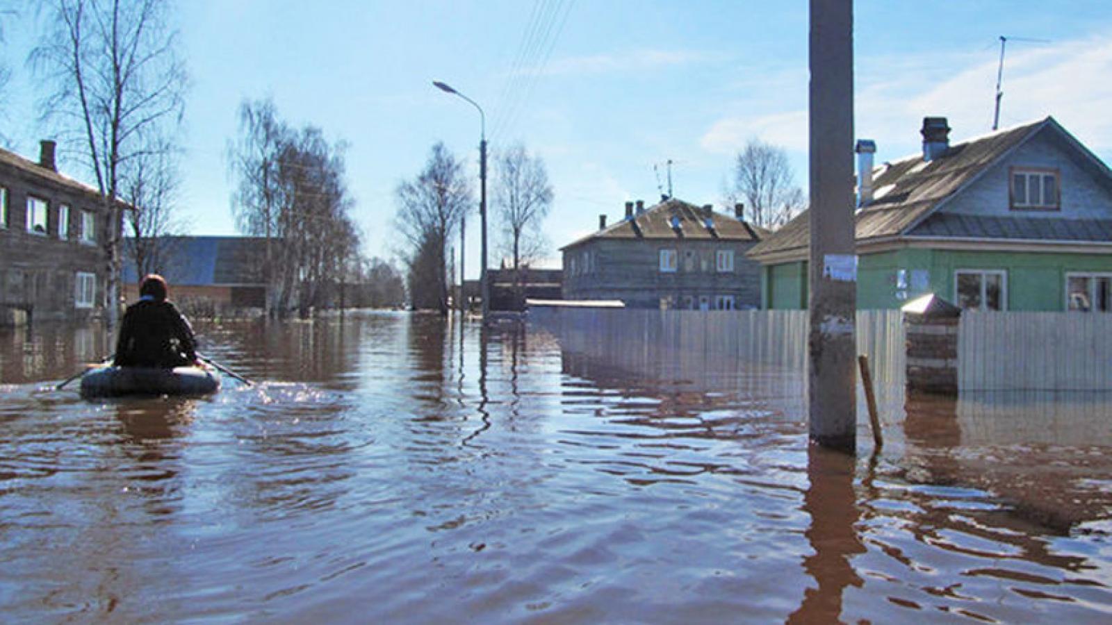 В этом году 70 населенных пунктов Вологодчины могут пострадать от паводка
