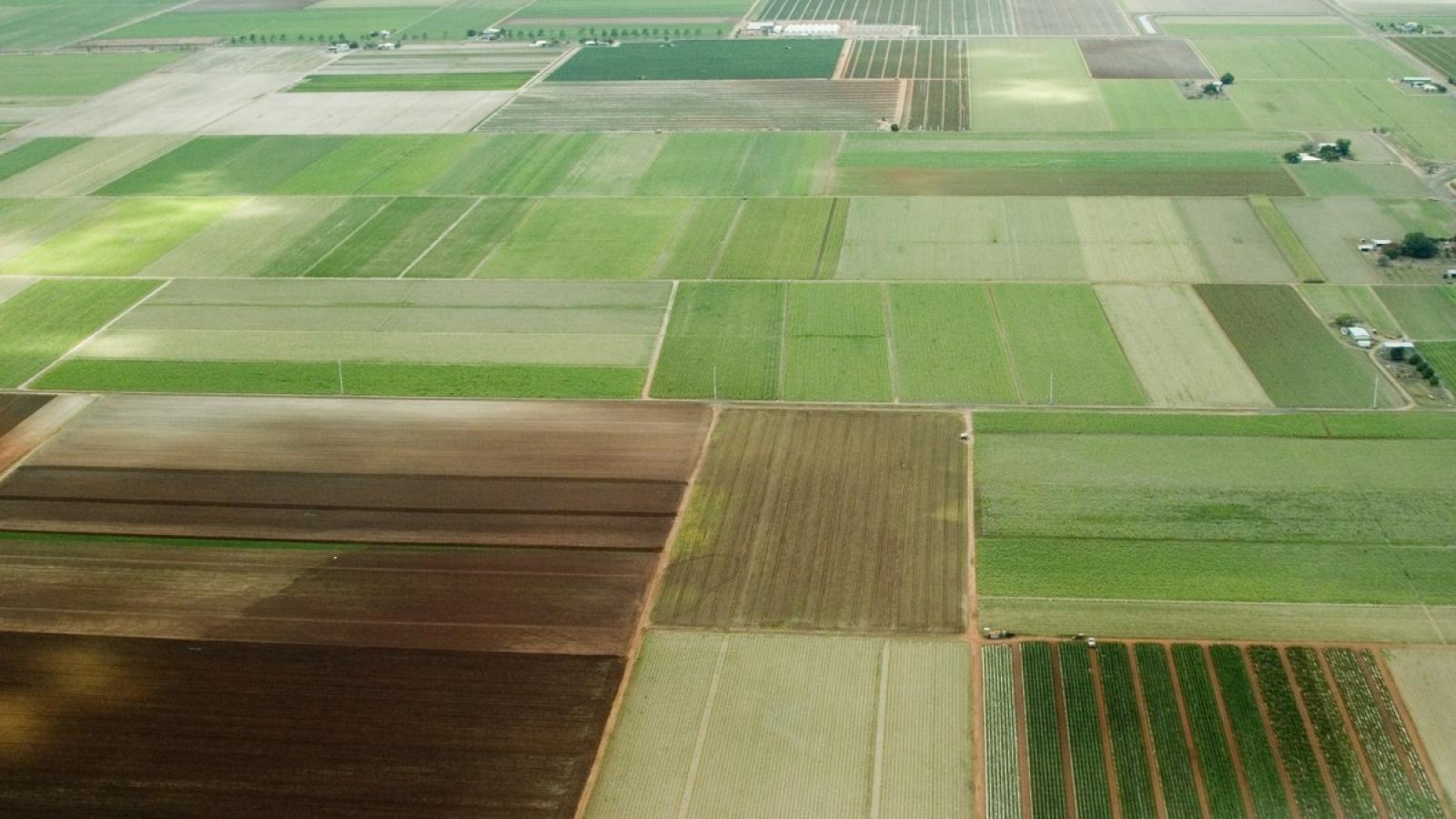 Со следующего месяца начнется раздача земельных участков на Вологодчине