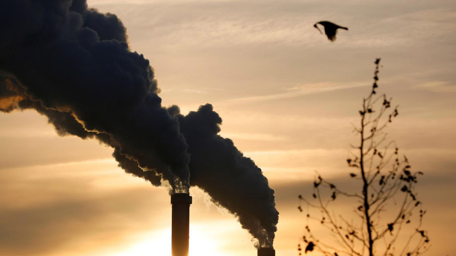 На Вологодчине не планируют строить мусоросжигательный завод