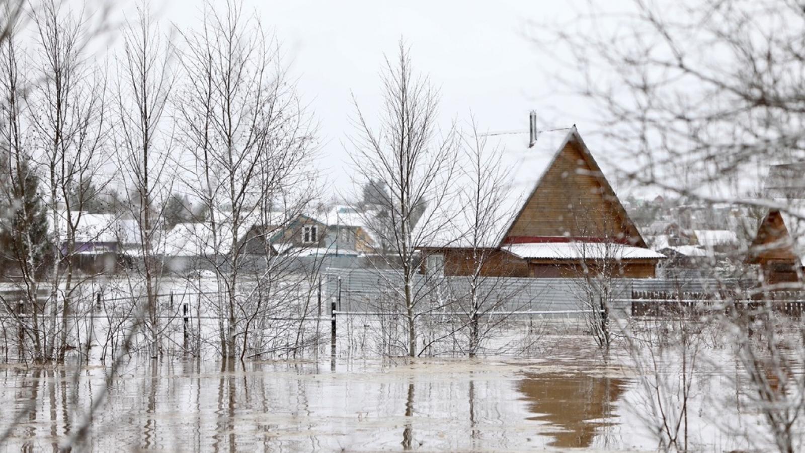 В выходные в Вологде ожидается потепление