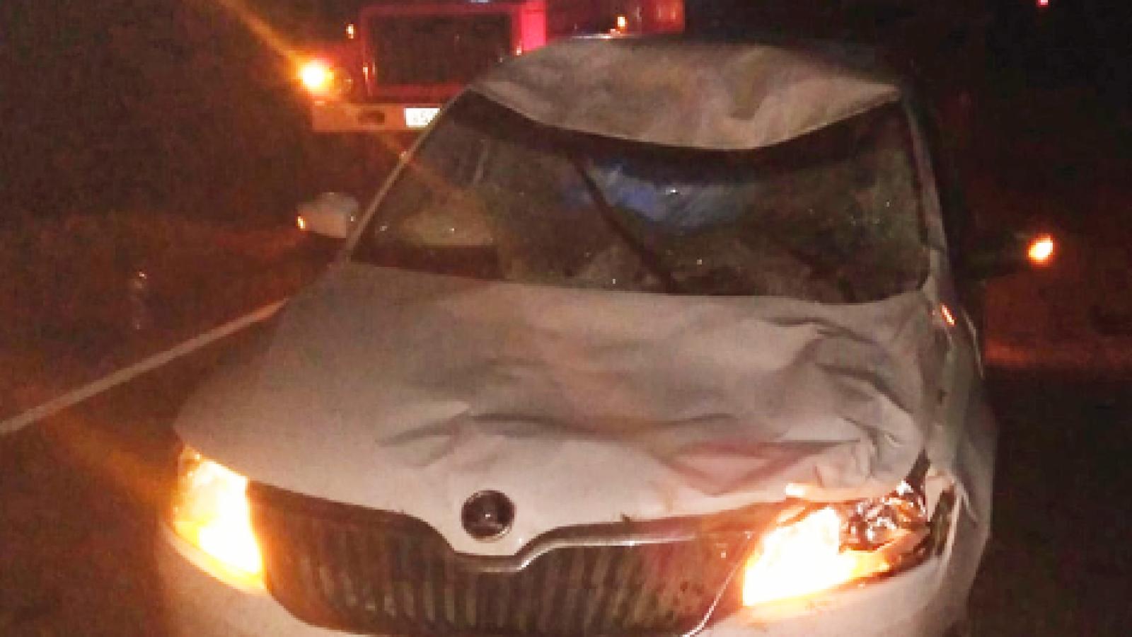 Водитель пострадал в ДТП с лосем