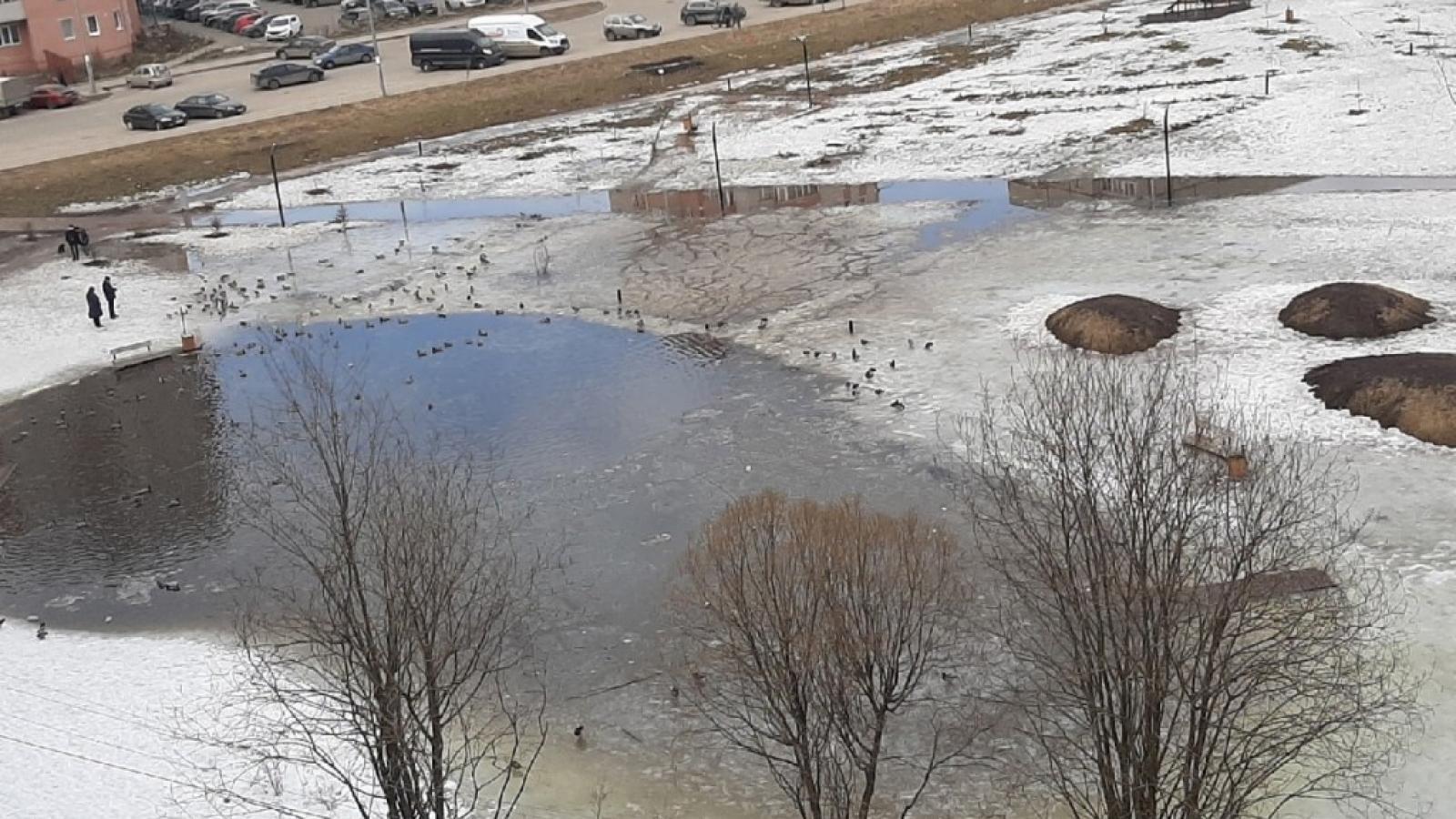 Фрязиновский парк затопило