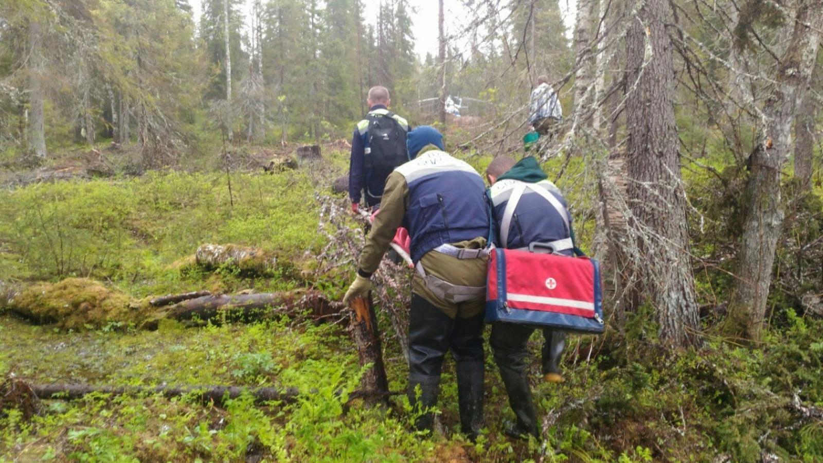 В Череповецком районе спасли мужчину, сломавшего ребра в лесу