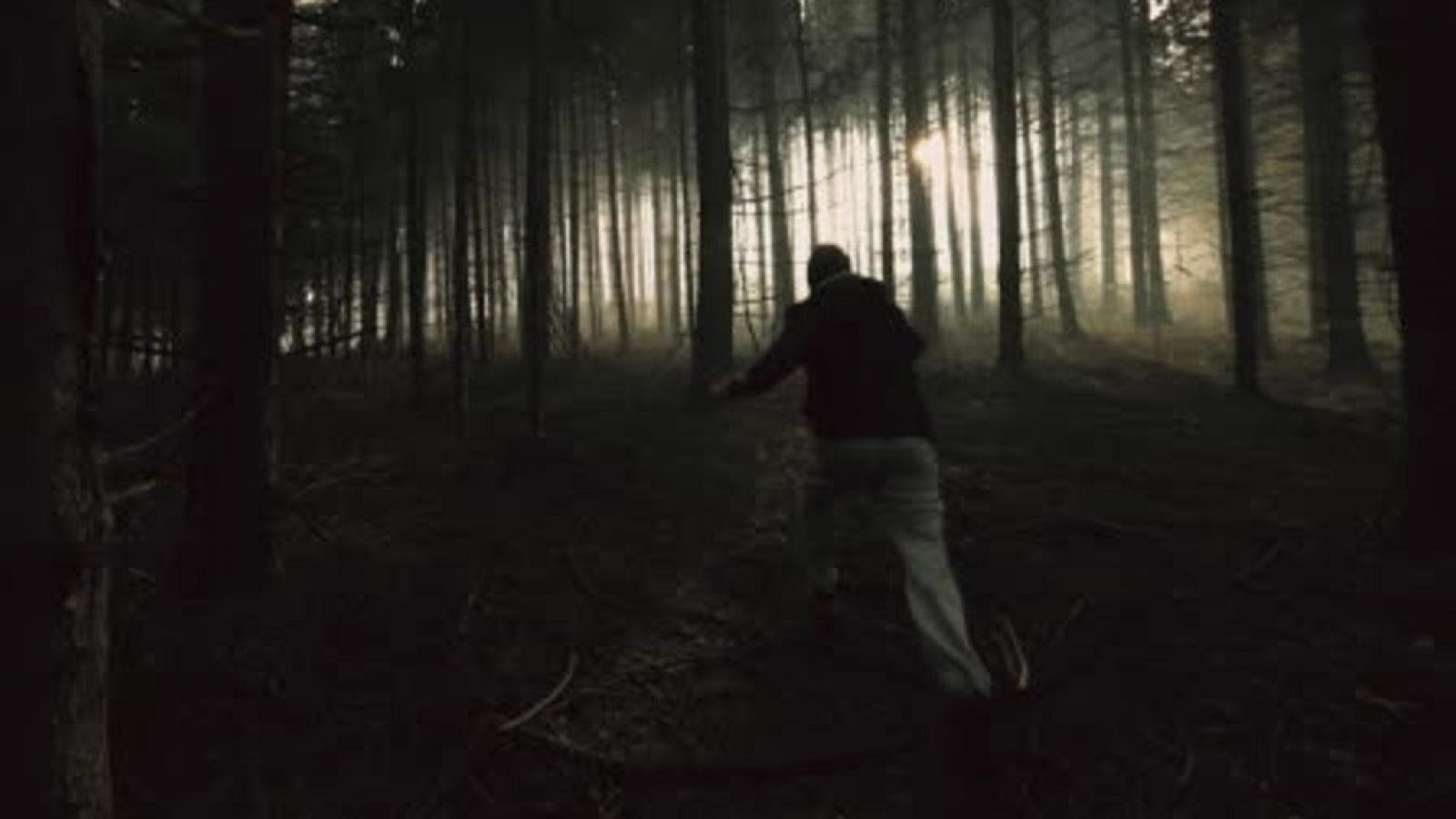 Пьяный водитель убежал в лес и покусал полицейского