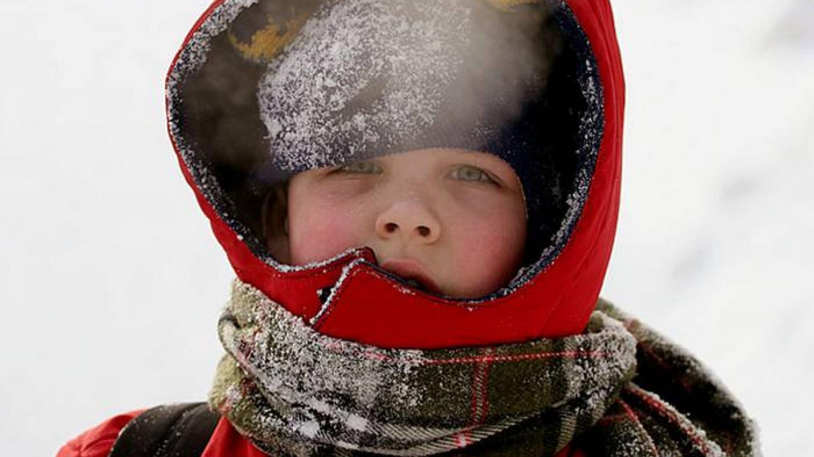 Как будут учиться школьники в морозы?