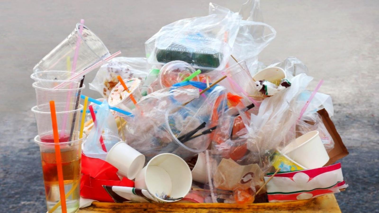 В России предлагают запретить пластиковую посуду