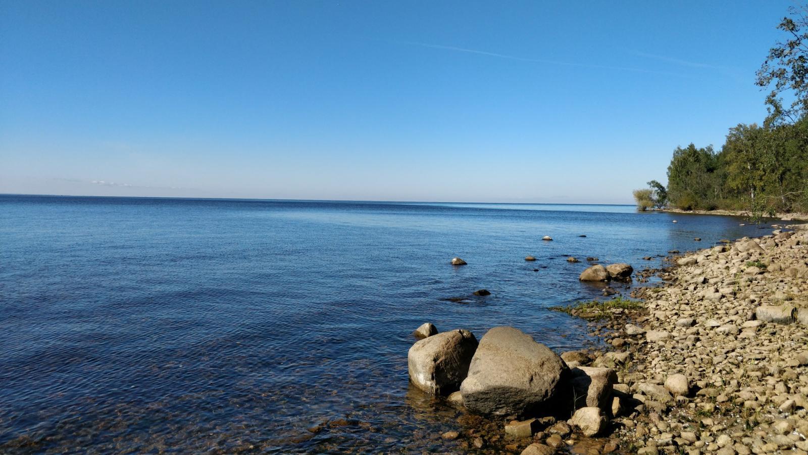 На Рыбинском водохранилище двух серфенгистов унесло на 3 километра от берега