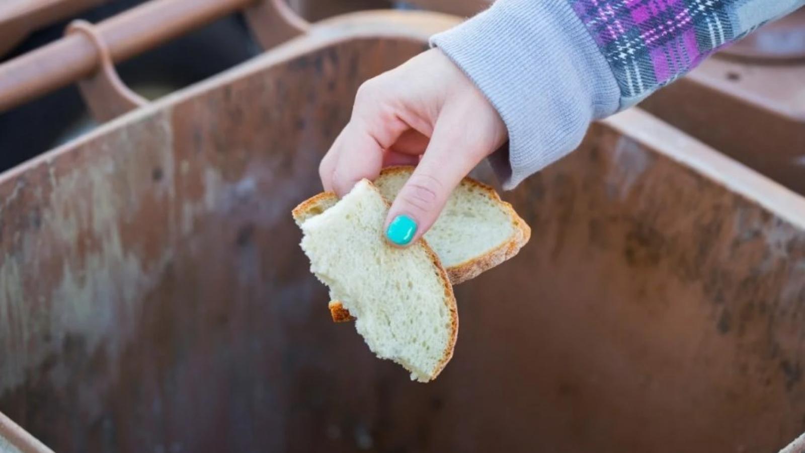 Хорош ли хлеб на Вологодчине?