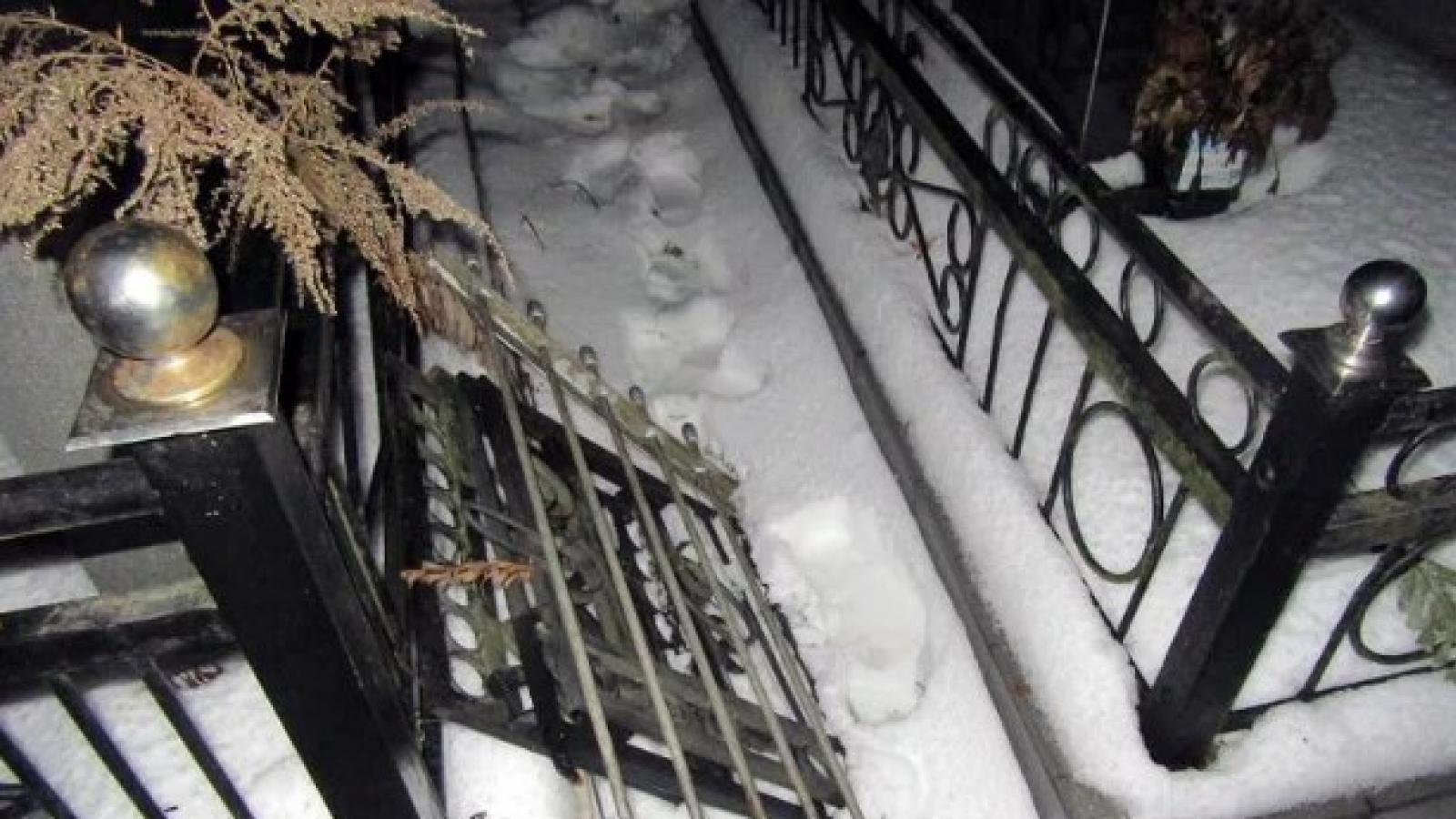 Борьба с оградками на череповецком кладбище