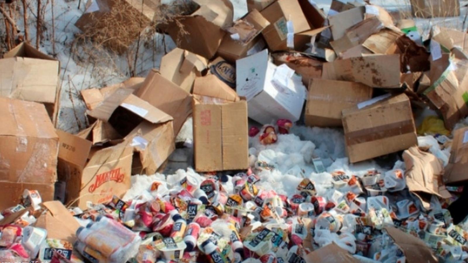 В Вологде задыхаются от нелегальной свалки