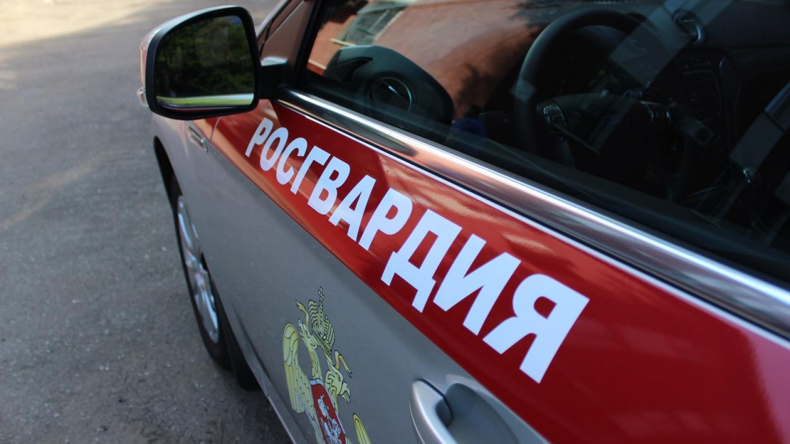 «Хотели наказать»: в Вологде двое избили и ограбили пешехода, нарушившего ПДД