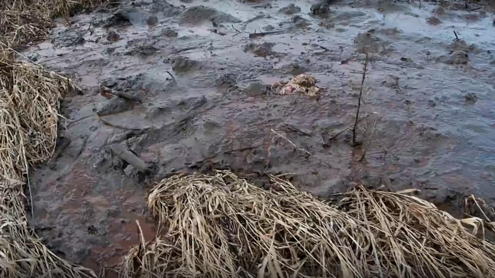 В Белозерске цементную смесь выливают на поля