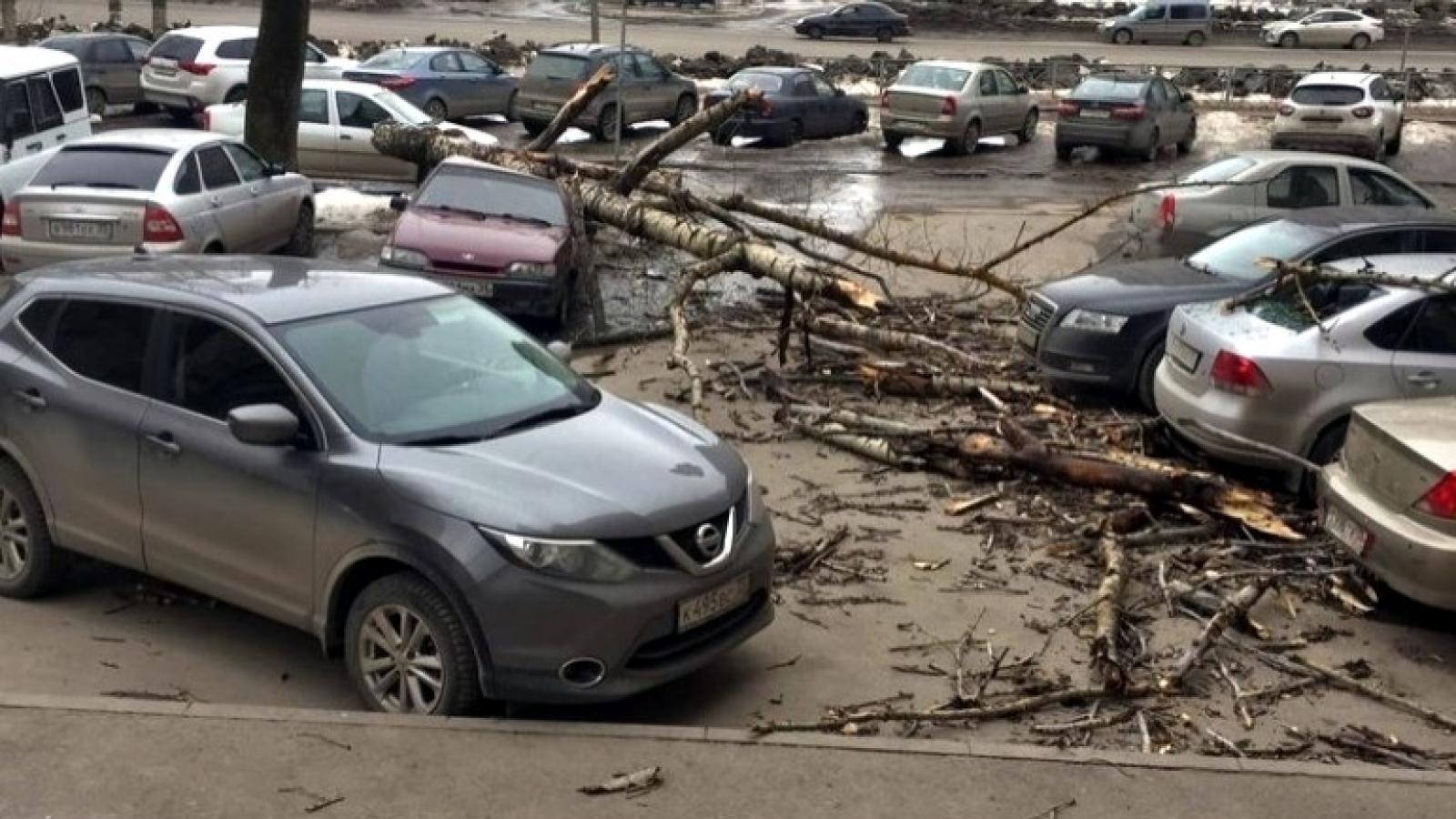 Последствия шторма в Вологде