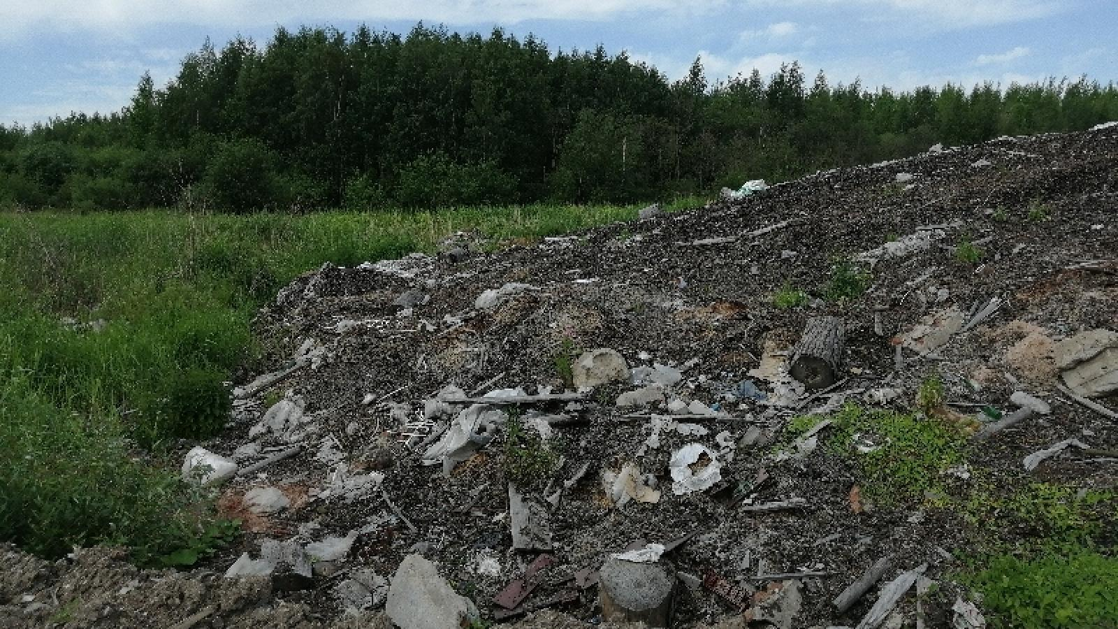 Череповецкую фабрику обязали убрать отходы из черты города