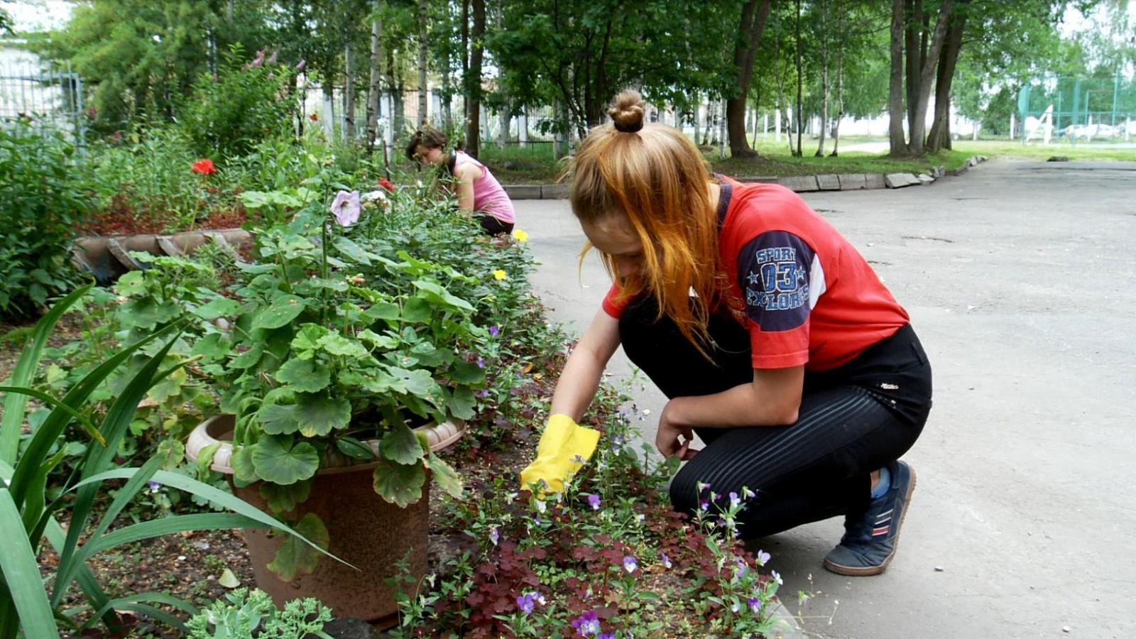 Работу для подростков создают в Вологде