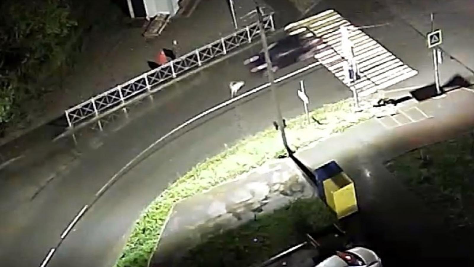 Молодой человек раздавил собаку на ул. Гончарной