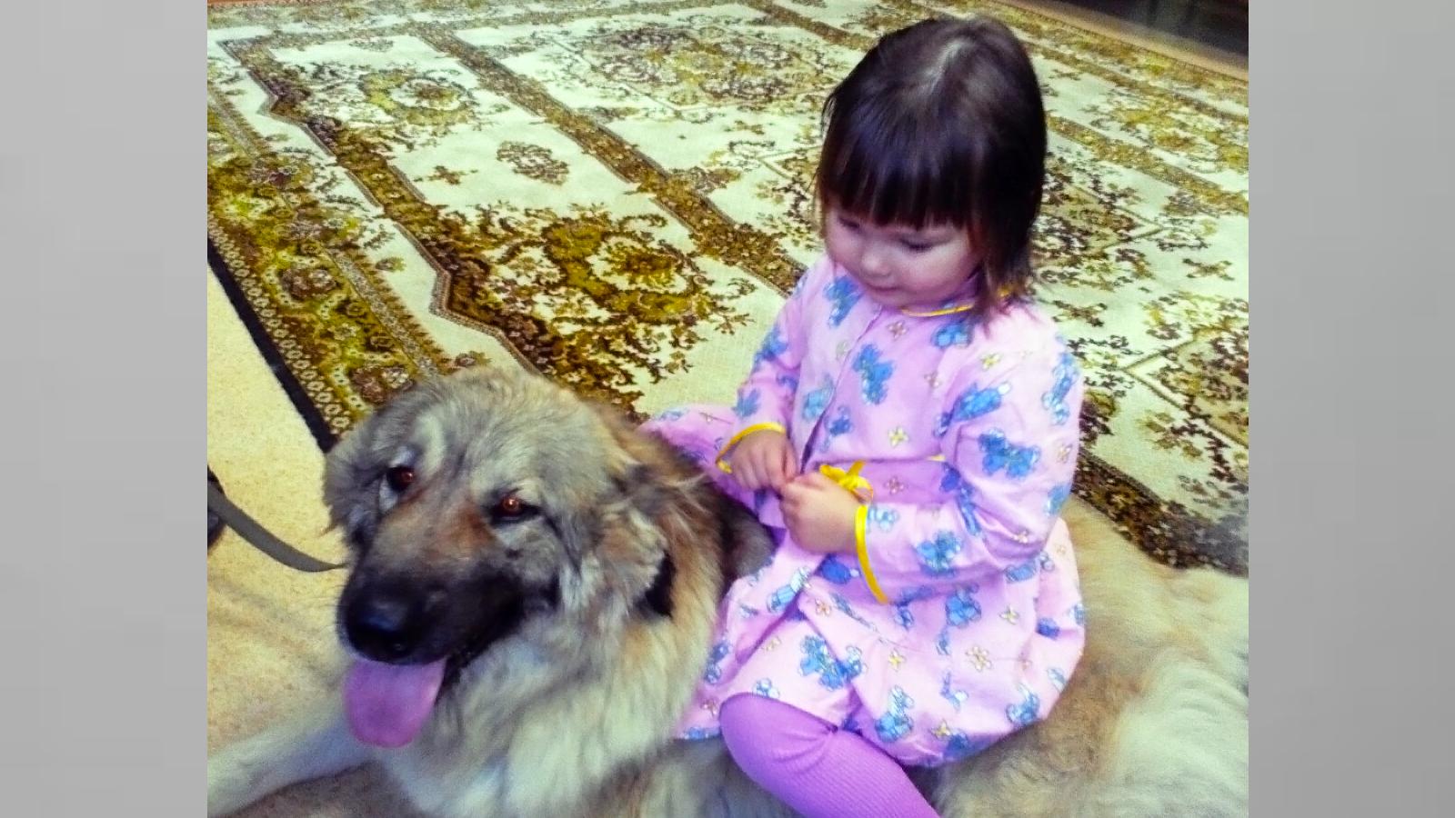 Чудеса дрессировки собак продемонстрировали вологодским детям-сиротам
