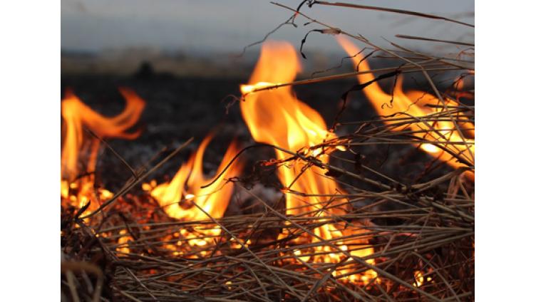 В Вологодском районе 2 дня подряд горела солома