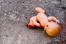Следователи нашли мать, убившую новорожденного сына