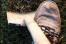 Вологжанин, убивший бывшую супругу, отправится в колонию на 9,5 лет