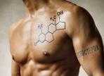 Мужчины с высоким уровнем тестостерона могут вести себя неразумно