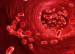 Ученые обнаружили, как начинается лейкемия