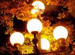 В Ковыринском парке и Осановской роще появится уличное освещение