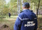 Двое пропавших в лесу мужчин найдены погибшими