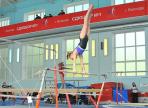 Вологодские и Череповецкие гимнасты поборются за областное первенство