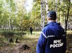 В Череповецком районе продолжают искать заблудившихся пенсионеров