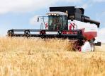 Вологодские аграрии подвели первые итоги уборочной кампании