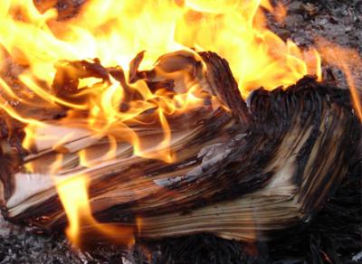 В областной столице сгорели 2 тонны макулатуры