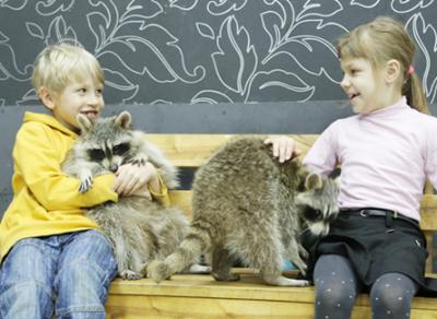 В Череповце ребенка-инвалида пытались выгнать с выставки