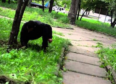 17-летнего пособника в приобретении наркотика «сдали» товарищи