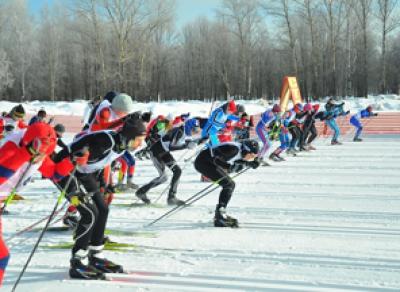 Более 300 спортсменов приняли участие в Фестивале зимних видов спорта