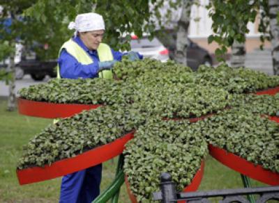 Долги «Вологдазеленстроя» погасят из городской казны