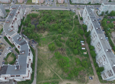 «Фронтовики» помогают жителям Фрязиновской в организации зеленой зоны